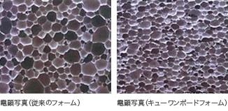 顕微写真の比較