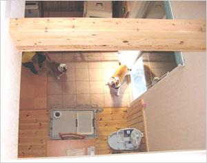2階のホールから吹抜けを見下ろすと愛犬の様子がよくわかる(2階ホール)