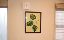 壁にかけられたキルトが印象的なLDK。カーテンの色もキルトが引き立つよう選択。