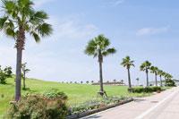 近くにはマリンスポーツ、バーベキューやテニスが楽しめる二色浜公園がある