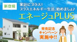 プラスエネルギー住宅