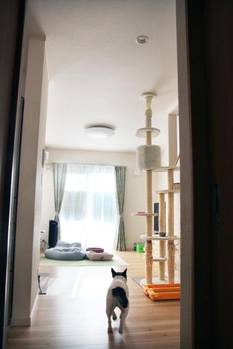 【建て替え:千葉県松戸市】リビング/ZEH