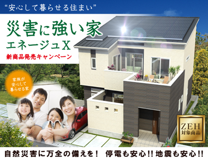 strong-house_campaign-02