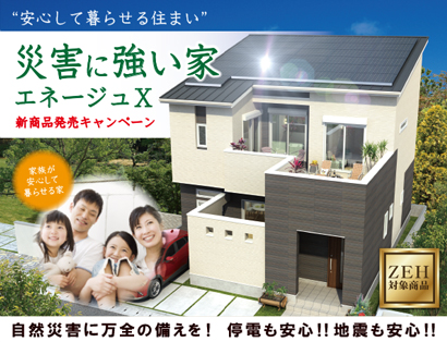 strong-house_campaign-03